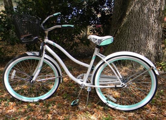 new bike 002a